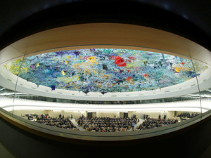 India pulls up Pakistan, Turkey & OIC at UNHRC meet for comments on internal matters – Indian Defence Research Wing